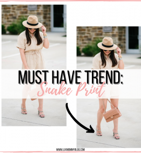 Fall Must Have Trend – Snake Print